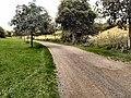 Path near Piddinghoe - geograph.org.uk - 2519595.jpg