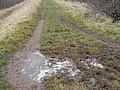 Path still frozen at 3.30 - geograph.org.uk - 1111383.jpg