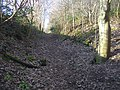 Path up Silverhill - geograph.org.uk - 1087803.jpg