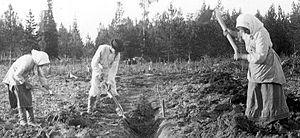 1800 Luku Suomessa