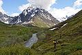Peters Creek backtounry below Mount Rumble.JPG