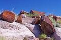 Petrified Forest National Park, Arizona, October 9, 2011 (11035530195).jpg