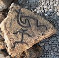 Petroglyphs in Puako Petroglyph Archaeological District 1344.JPG