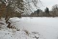 Pfaffensee im Winter (3).jpg
