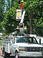Phone Line Truck Repair.jpg