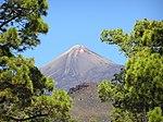 Pico el Teide.jpg