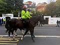 Policía montada de Londres.jpg