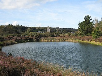 Bissoe - A pond in Bissoe Valley Nature Reserve (arsenic works in background)
