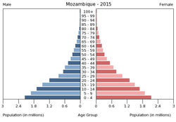 Population pyramid of Mozambique 2015.png