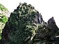 Porosty na skale przy Jons Kapel - panoramio.jpg