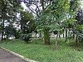 Praça Armando Luiz Argeu - panoramio.jpg