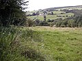 Public Bridleway, Low Muffles - geograph.org.uk - 537411.jpg