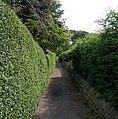 Public Footpath - Baildon Road - geograph.org.uk - 512467.jpg
