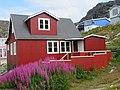 Purple flowers and red house Qarqortoq Greenland.jpg