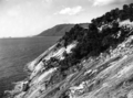 Queensland State Archives 1293 Cook Highway looking south to Cairns Point Port Douglas c 1935.png