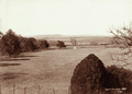 Queensland State Archives 2365 View from East Talgai 1897.png