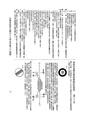 ROC1968-10-01道路交通標誌標線號誌設置規則2.pdf