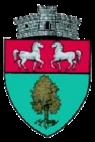 ROU SV Calafindesti CoA.png
