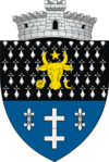 Coat of arms of Putna