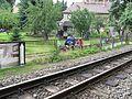 Radebeul Gartenbahnschau gegenüber Haus Fährmann 07.JPG