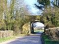 Railway Bridge Near Inadown - geograph.org.uk - 368651.jpg