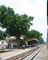 Rajastan, railside scenes between Rawanjana Dungar and Bansthali Niwai (5).JPG