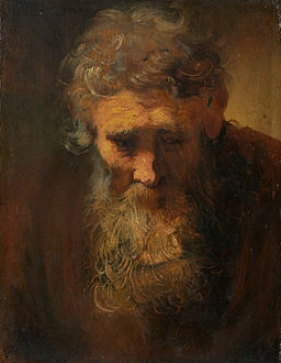 Rembrandt - Study of an Old Man - Widener