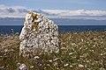 Rest sten på Neptuni åkrar.jpg