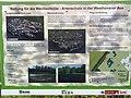 Rettung für die Wechselkröte. Artenschutz in der Westhovener Aue - Mapillary (fw6PRdyTfj0RS5WzqrWoVw).jpg