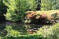 Rhododendronpark Bremen 20090513 087.JPG