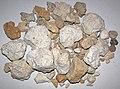 Rhyolitic pumice (El Cajete Pumice Bed, Upper Pleistocene, 55-60 ka; Rt. 4 roadcut, Valles Caldera, New Mexico, USA) 1.jpg