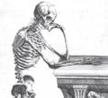 Riedel Skelett 2 Ausschnitt.PNG