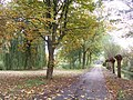 Rijswijk - 2008 - panoramio - StevenL (5).jpg