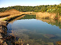Riu bullent (pego).jpg