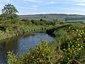 River Forth - geograph.org.uk - 191766.jpg