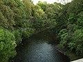 River Kelvin from Cowal Road - geograph.org.uk - 545502.jpg