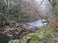 River Teign, near Broadmoor Common - geograph.org.uk - 1116471.jpg