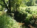 River Wey and Sheep Beneath Willow - geograph.org.uk - 1448136.jpg