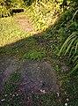 Rock-cornwall-england-tobefree-20150715-185418.jpg