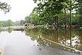 Roman Forest Flood Waters - 4-19-16 (25920390753).jpg