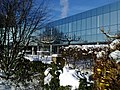 Rosenterrassen im Winter (3).jpg