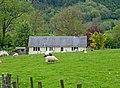 Rural housing - geograph.org.uk - 1321990.jpg