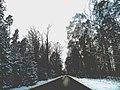 Rural road in winter.jpg