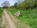 Rustic timber bench on the Stour Valley Walk - geograph.org.uk - 783144.jpg