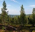 Särkijärvi and Pallas Fells - panoramio.jpg