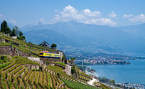M. F. K. Fisher - View from Chexbres toward Vevey