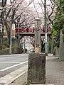 Sakurazaka 02.jpg
