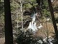 Salt Springs State Park (3284697132).jpg