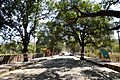 Sanchi Hill Approach Road - Raisen - 2013-02-21 4247.JPG