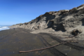Sandy beach and cliffs at Moss Landing.png